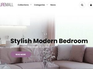 Furniture & Home Decor Website | Potential Profit: 5000$/month