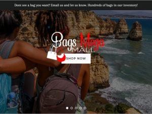 Bags Dropship Ecommerce Website | Potential Profit: 5000$/month