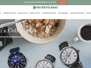 Watch Dropship Ecommerce Website | Potential Profit: 5000$/month